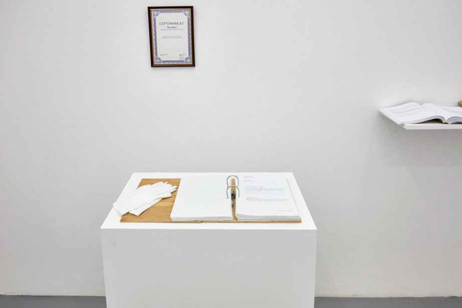Bouillon Group, What is the meaning of Vladikavkaz and who is Vladimir?, 2015, basis, installation view, 2018