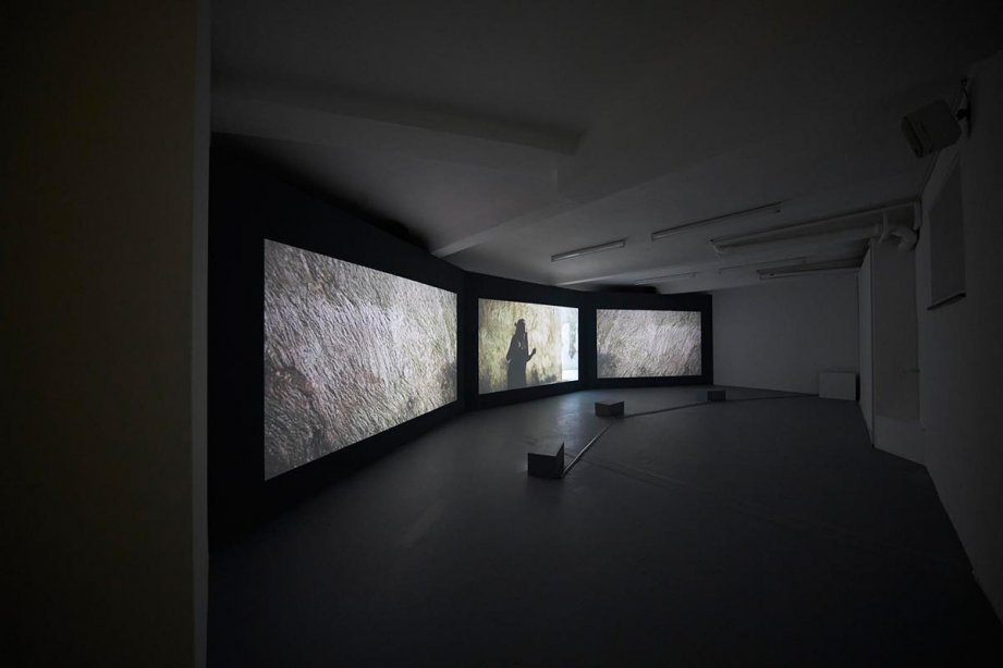 Installation View, In the Ear of the Tyrant, 2014, basis 2017, Foto: Günther Dächert, Courtesy of the artist and Anna Schwartz Gallery, Melbourne; and Galerie Allen, Paris