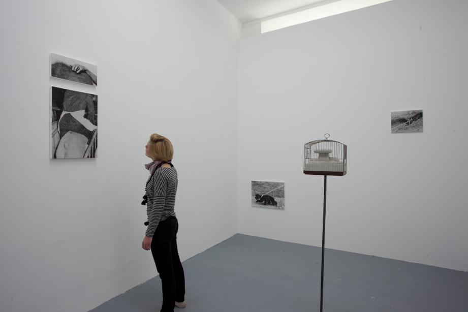 Ausstellungsansicht Ulrich Gebert - A Rat is a Pig is a Dog is a Boy, basis 2012, Foto: Cem Yücetas